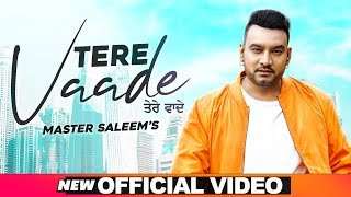 Tere Vaade Mp3 Song  Master Saleem